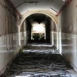 Asylum I.1