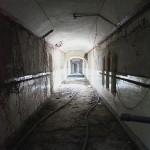 Asylum I.5
